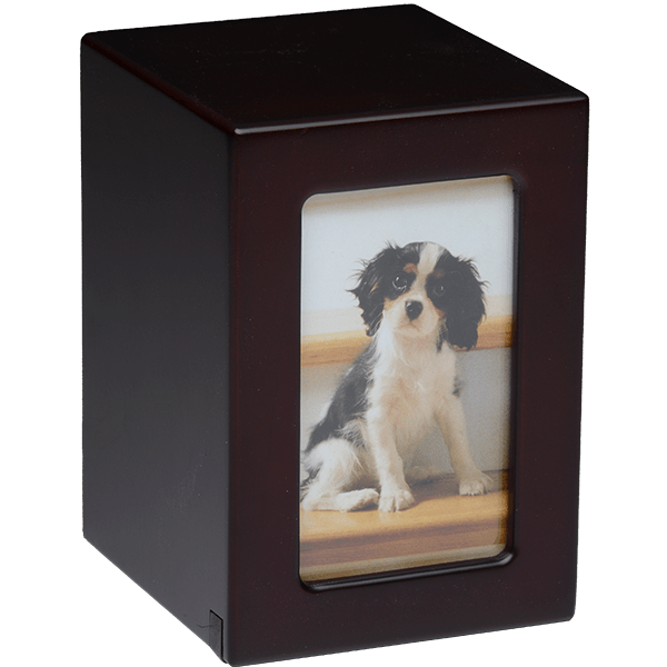 Affordable Dark Cherry Photo Frame Pet Urn Medium Size Urn Market